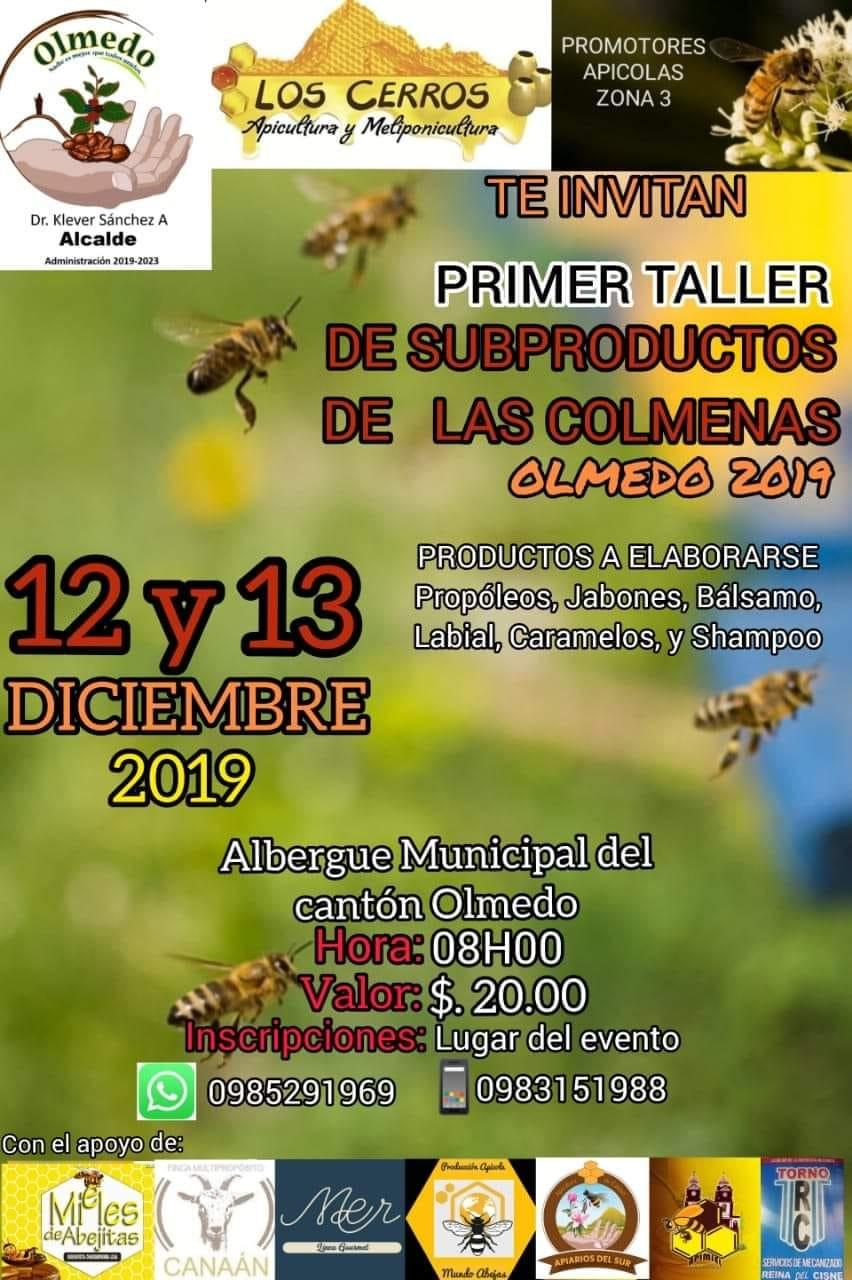 taller colmenas